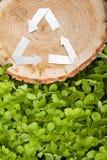 Деревянный отрезок на траве и рециркулирует символ Стоковые Изображения RF