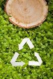 Деревянный отрезок на траве и рециркулирует символ Стоковые Изображения