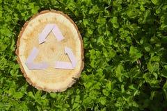 Деревянный отрезок на траве и рециркулирует символ Стоковое фото RF