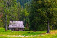 Деревянный охотничий домик на крае coniferous Стоковое Изображение