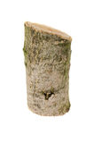 Деревянный пень изолированный на белой предпосылке Стоковое фото RF