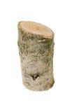 Деревянный пень изолированный на белой предпосылке Стоковые Фото
