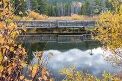 Деревянный пешеходный мост над потоком Стоковые Фото