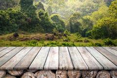 Деревянный пол и зеленый лес стоковые изображения rf