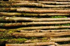 Деревянный пол Стоковое фото RF