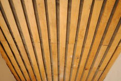 Деревянный потолок снятый в перспективе Стоковая Фотография RF