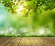 Деревянный пол и небо Стоковые Изображения