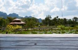 Деревянный пол с предпосылкой пруда и сада стоковая фотография