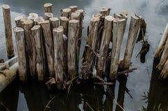 Деревянный поляк в воде Стоковое фото RF