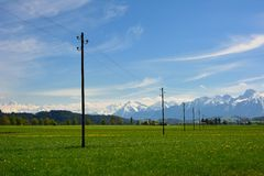 Деревянный поляк для электрического Стоковые Изображения