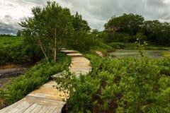 Деревянный путь в кальдере Uzon Заповедник Kronotsky стоковая фотография