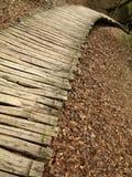 Деревянный путь в национальном парке Plitvice Стоковые Изображения RF