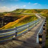 Деревянный путь в центре Nobbies на острове Phillips Стоковые Изображения