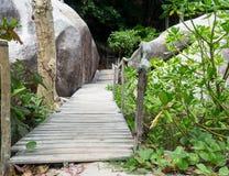 Деревянный путь прогулки Стоковое Изображение RF