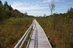 Деревянный путь планки стоковая фотография rf