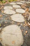 Деревянный путь Стоковое Фото
