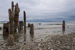Деревянный пляж Стоковые Изображения RF