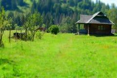 Деревянный сельский дом стоковая фотография