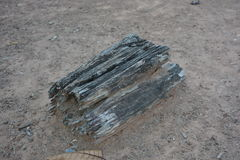 Деревянный спад на том основании Стоковое фото RF