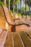 Деревянный стенд в линии в общественном парке Стоковое Изображение
