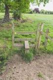 Деревянный стиль в поле Стоковое Изображение