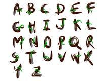 Деревянный стиль шрифта Стоковое фото RF