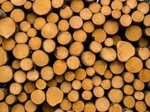 Деревянный стог Стоковое Изображение RF