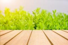 Деревянный стол и красивый монтаж предпосылки Стоковое Изображение RF