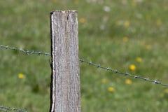 Деревянный столб Стоковое фото RF