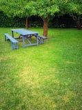 Деревянный стол в саде лета с зеленой лужайкой стоковое изображение rf