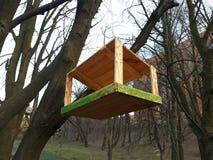 Деревянный фидер птицы в парке Стоковые Изображения