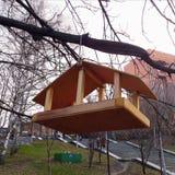 Деревянный фидер птицы в парке Стоковые Изображения RF