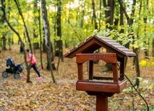 Деревянный фидер птицы в парке осени Стоковое фото RF