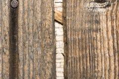 Деревянный шаблон Стоковые Изображения