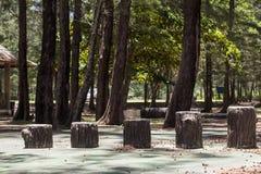 Деревянный шаг Стоковая Фотография