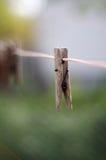 Деревянный шпек одежд на моя линии Стоковое фото RF