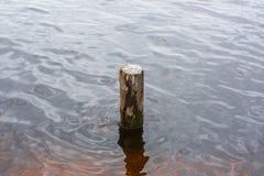 Деревянный штендер в воде стоковое фото