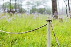 Деревянный штендер Стоковые Фотографии RF