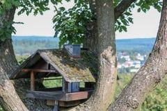 Деревянный birdhouse на дереве в Германии стоковое фото rf