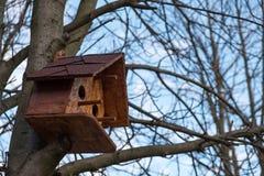 Деревянный birdhouse на дереве Стоковое фото RF