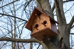 Деревянный birdhouse на дереве Стоковые Изображения RF