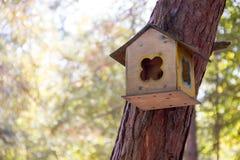 Деревянный birdhouse на дереве Стоковые Изображения