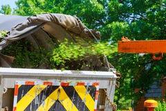 Деревянный Chipper в действии захватывает обломоки деревянного chipper или стрельбы mulcher Стоковая Фотография