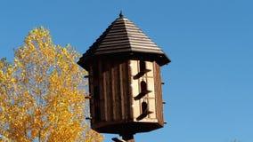 Деревянный dovecote видеоматериал