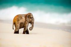 Деревянный figurine слона Стоковое Изображение