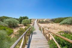 Деревянный footbridge планок в природном парке накидки Trafalgar к h стоковые фото