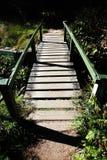 Деревянный footbridge с перилами Стоковые Изображения RF