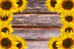 Деревянным предпосылка текстурированная пиломатериалом Стоковое Фото