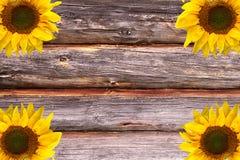 Деревянным предпосылка текстурированная пиломатериалом Стоковые Изображения RF