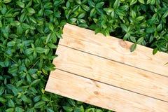 3 деревянных доски на лужайке в саде на пикнике Стоковые Фото